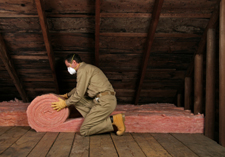 Insulation and Building Treatments (Construction)