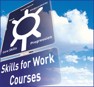 Skills for Work logo.